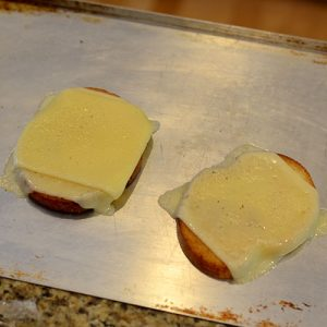 Cheese melted 500