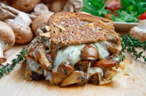 Mushroom Grilled Cheese Sandwich (aka The Mushroom Melt) 500 4485