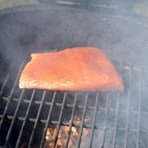 Salmon Smoking 500