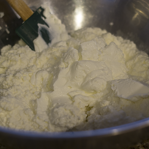 Ricotta and Yogurt 500