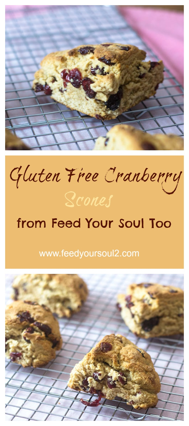 Gluten Free Vegan Cranberry Scone #vegan #glutenfree #bread | feedyoursoul2.com