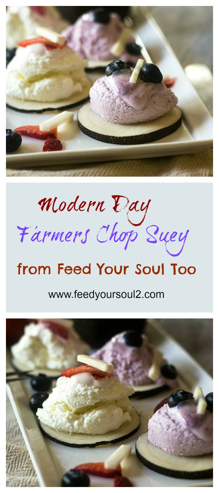 Modern Day Farmers Chop Suey #Healthy #promotio #probiotic | feedyoursoul2.com