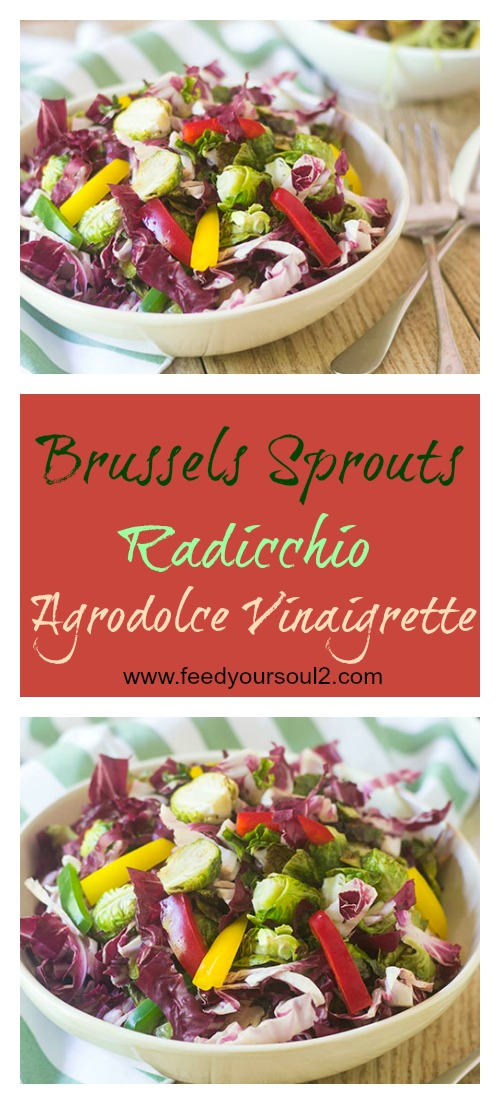 Brussels Sprouts Radicchio Agrodolce Vinaigrette #salad #vinaigrette #glutenfree | feedyoursoul2.com