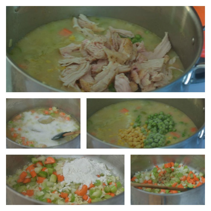 Building the Chicken & Vegetable Soup